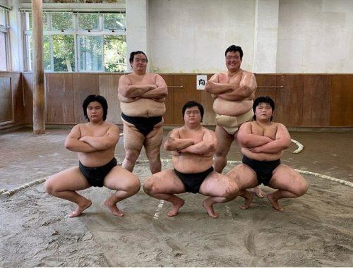 Sumo là môn thể thao không dành cho người gầy trong văn hóa Nhật Bản